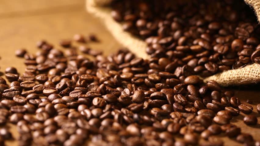Segafredo Kahve